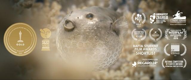 Pascal Schelbli wins Student Academy Award