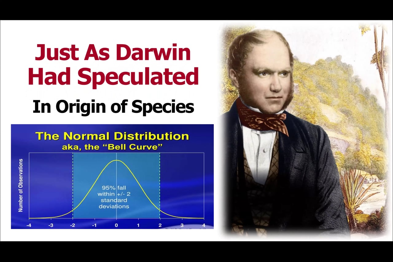 The Modern Synthesis/Neo-Darwinism