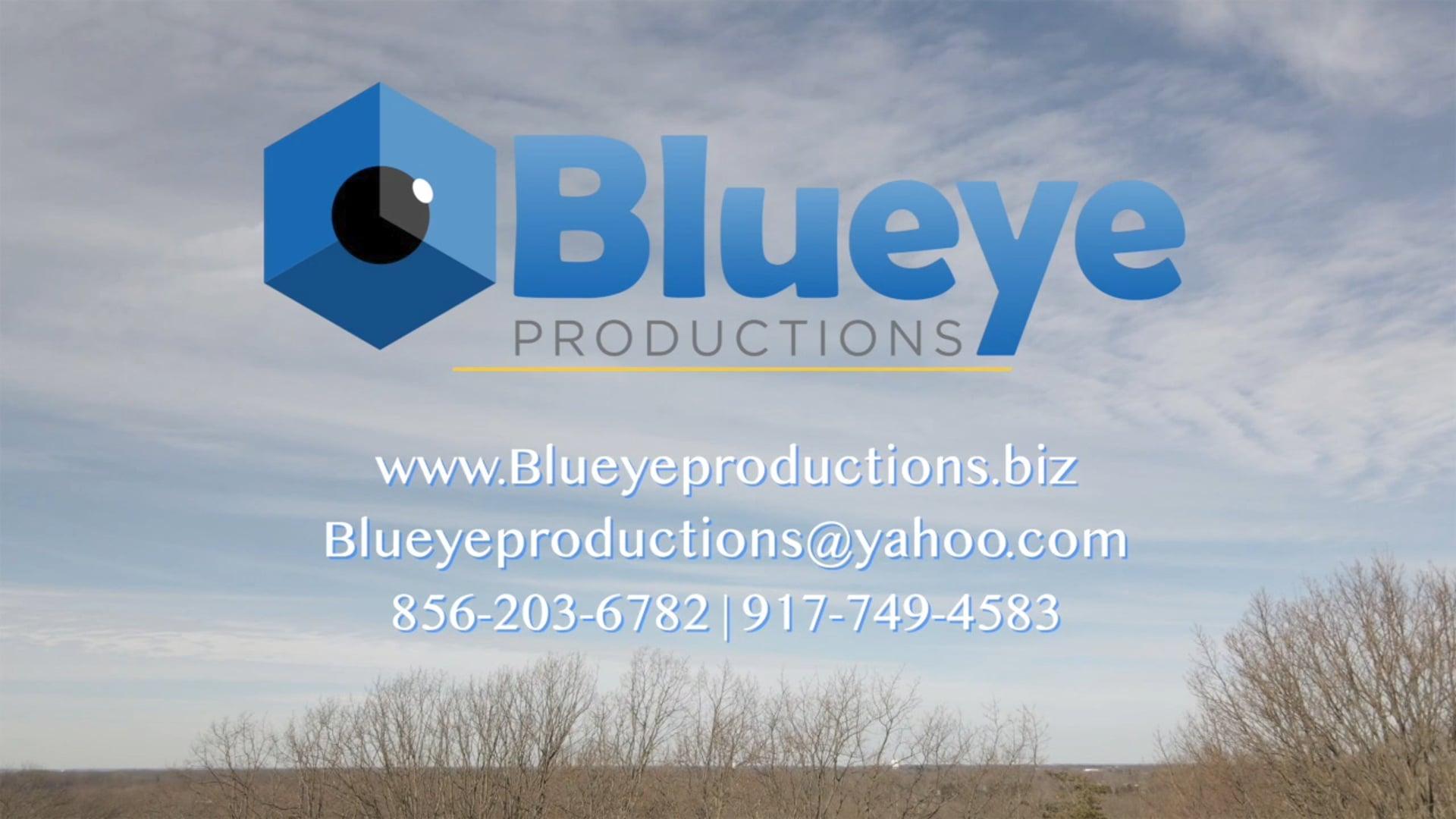 Blueye's Drone