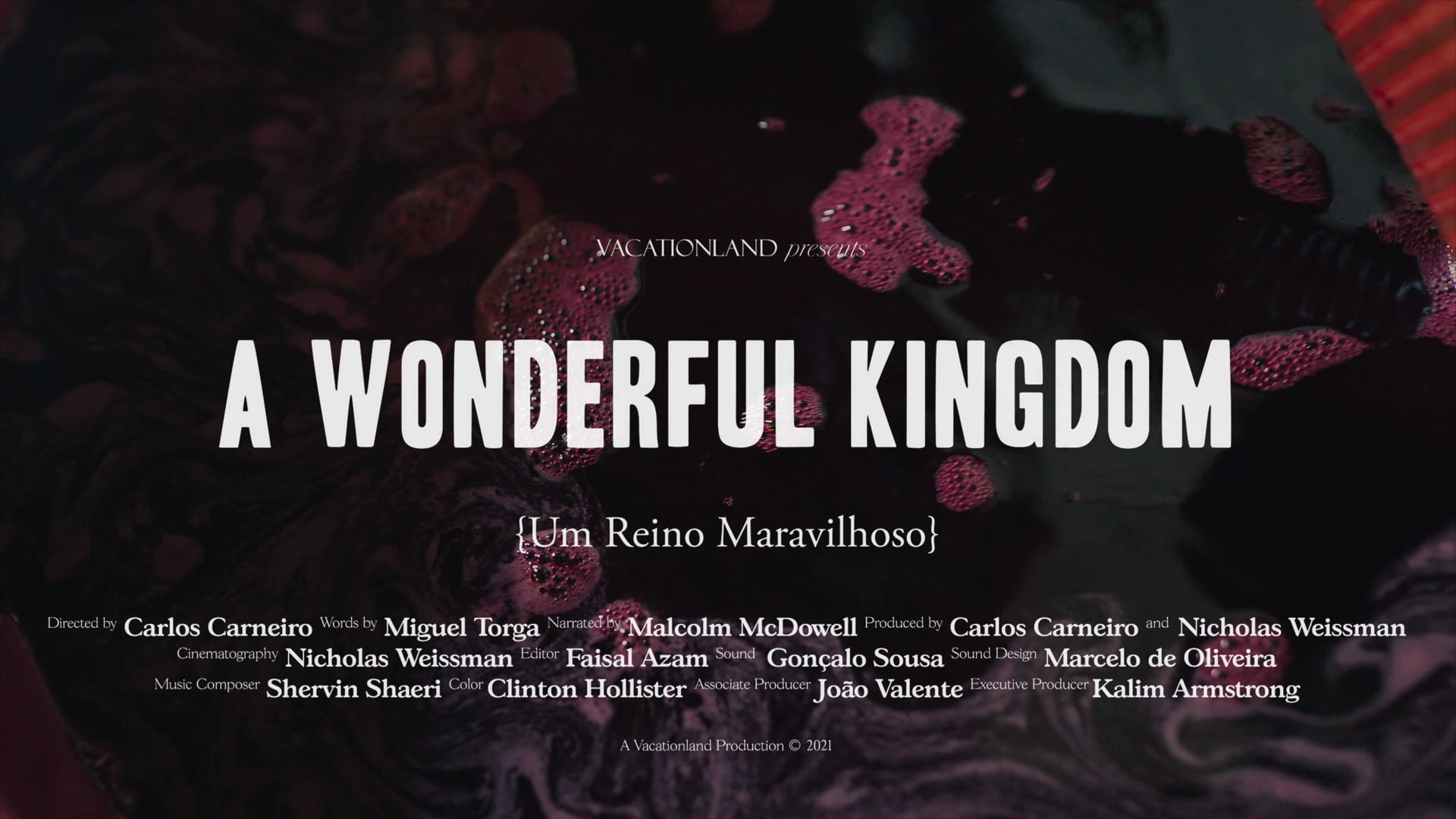 A Wonderful Kingdom [2021, Assistant Editor] 79 min