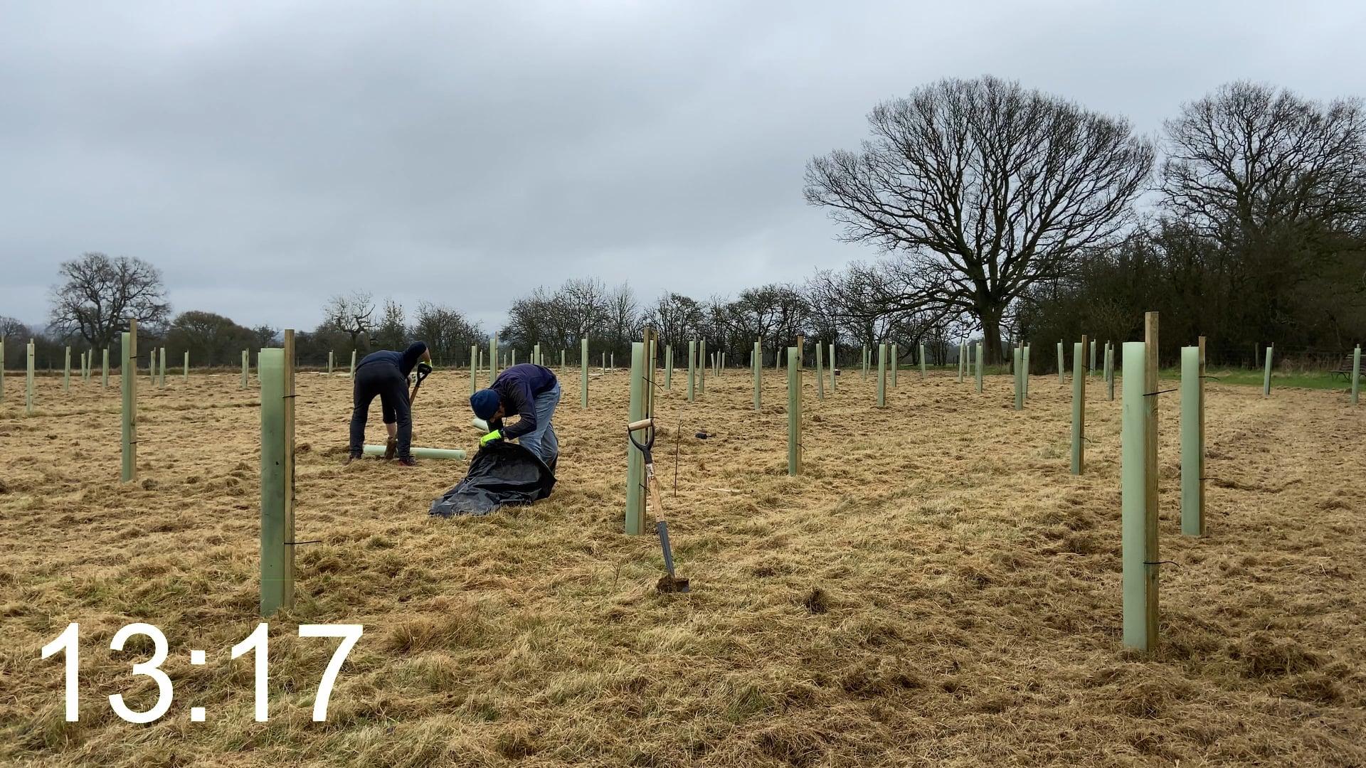 Ninebarrow Woodland Update - Thursday 4th March