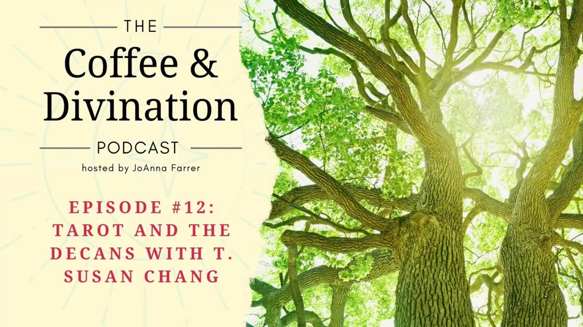Coffee & Divination - Episode #12: Tarot and the Decans with T. Susan Chang