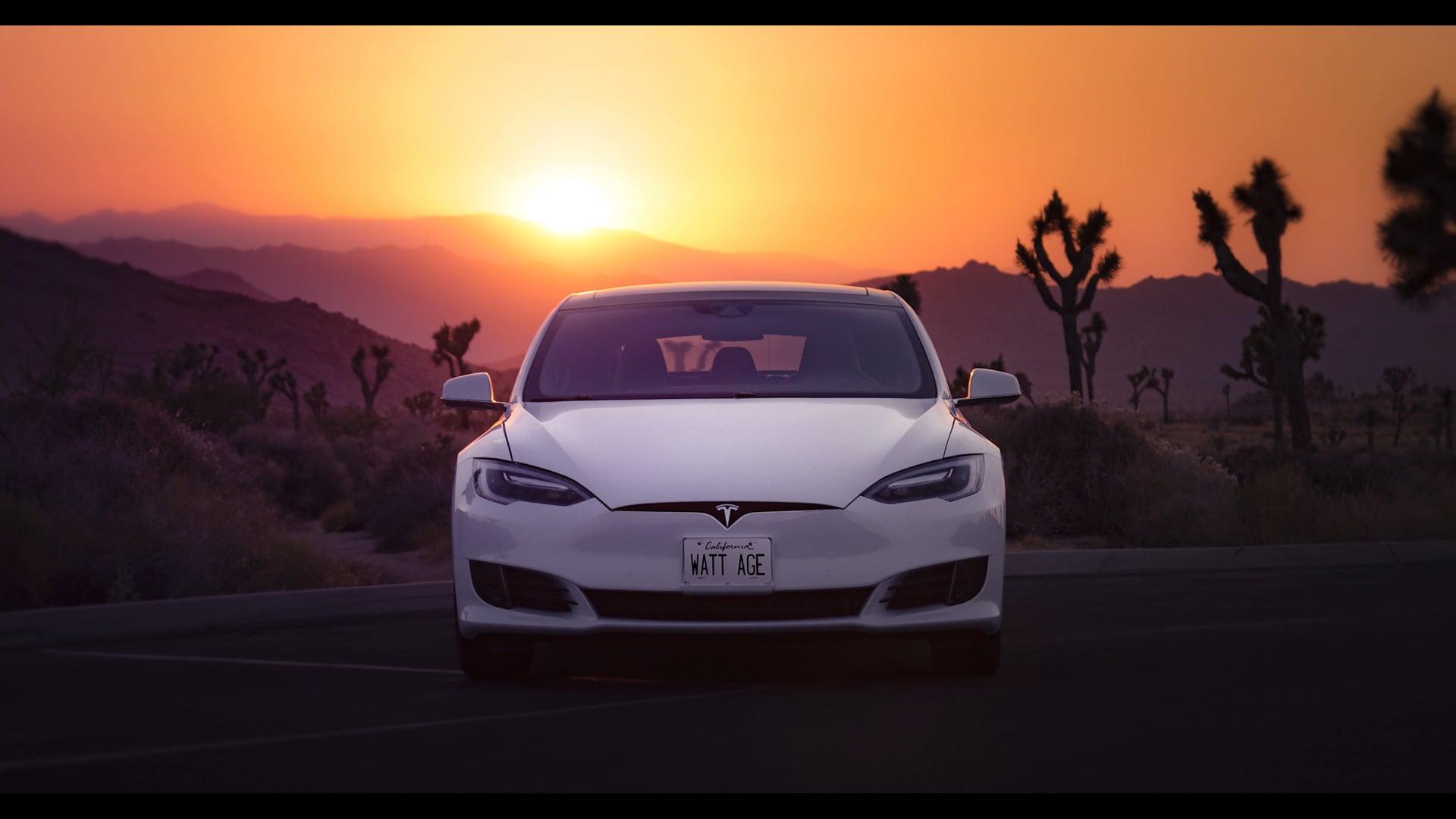 """Tesla """"Weekend Vibes"""""""