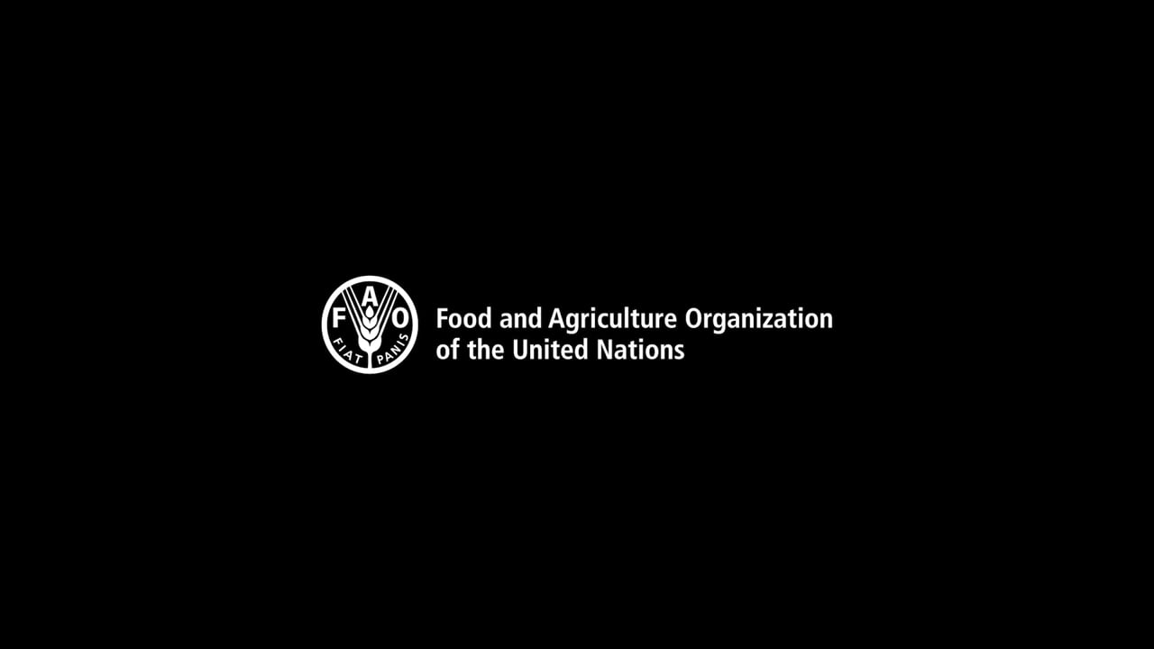 How safe is Africa's food?