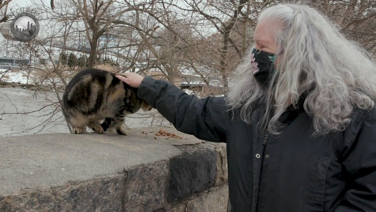 Inwood's Cat Queen