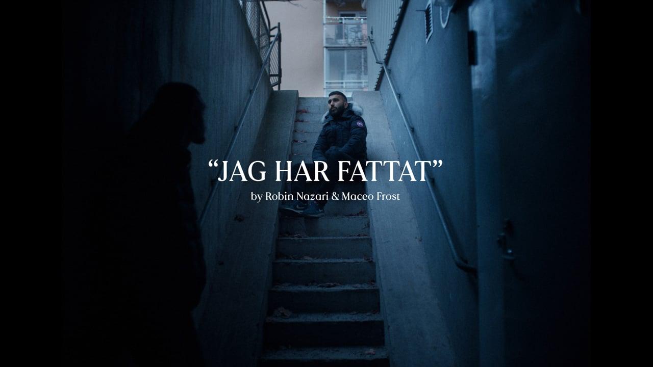 Jag Har Fattat  ( I've Understood ) - Robin Nazari & Maceo Frost