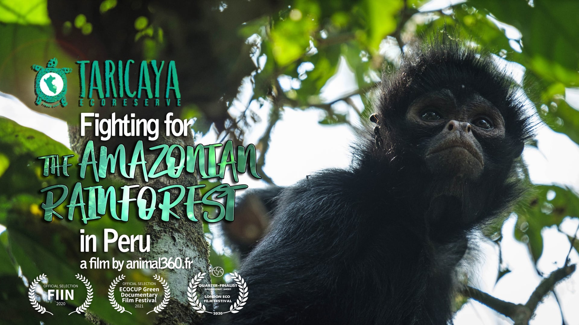 Taricaya ecoreserve, fighting for the amazonian rainforest in Peru