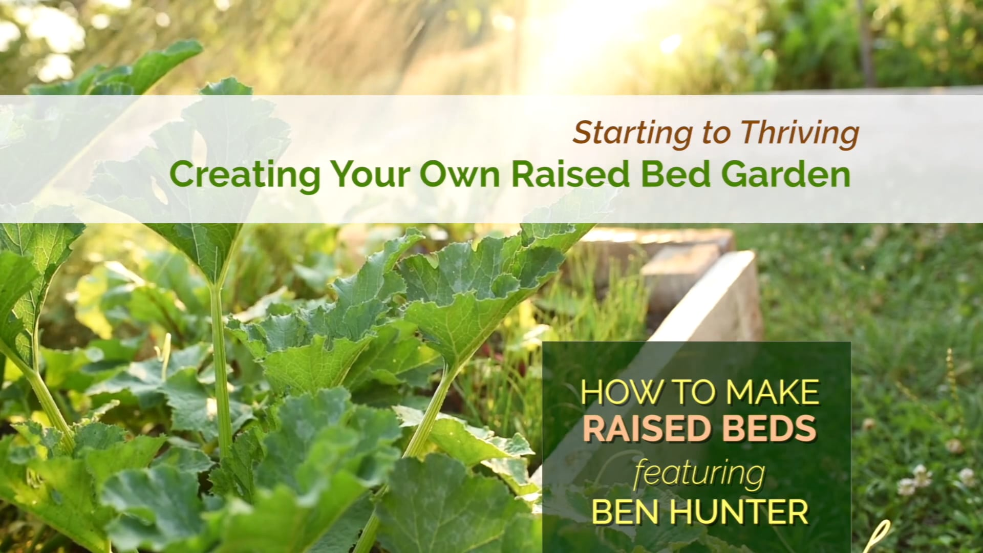How to Make Garden Raised Beds
