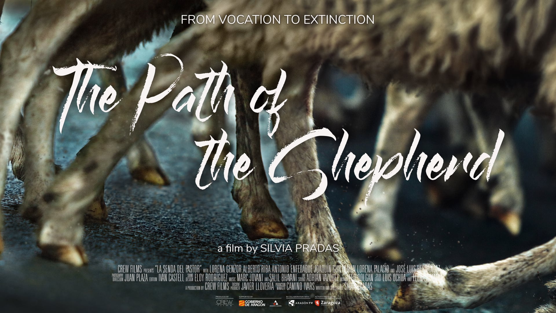 The Path of the Shepherd // Trailer