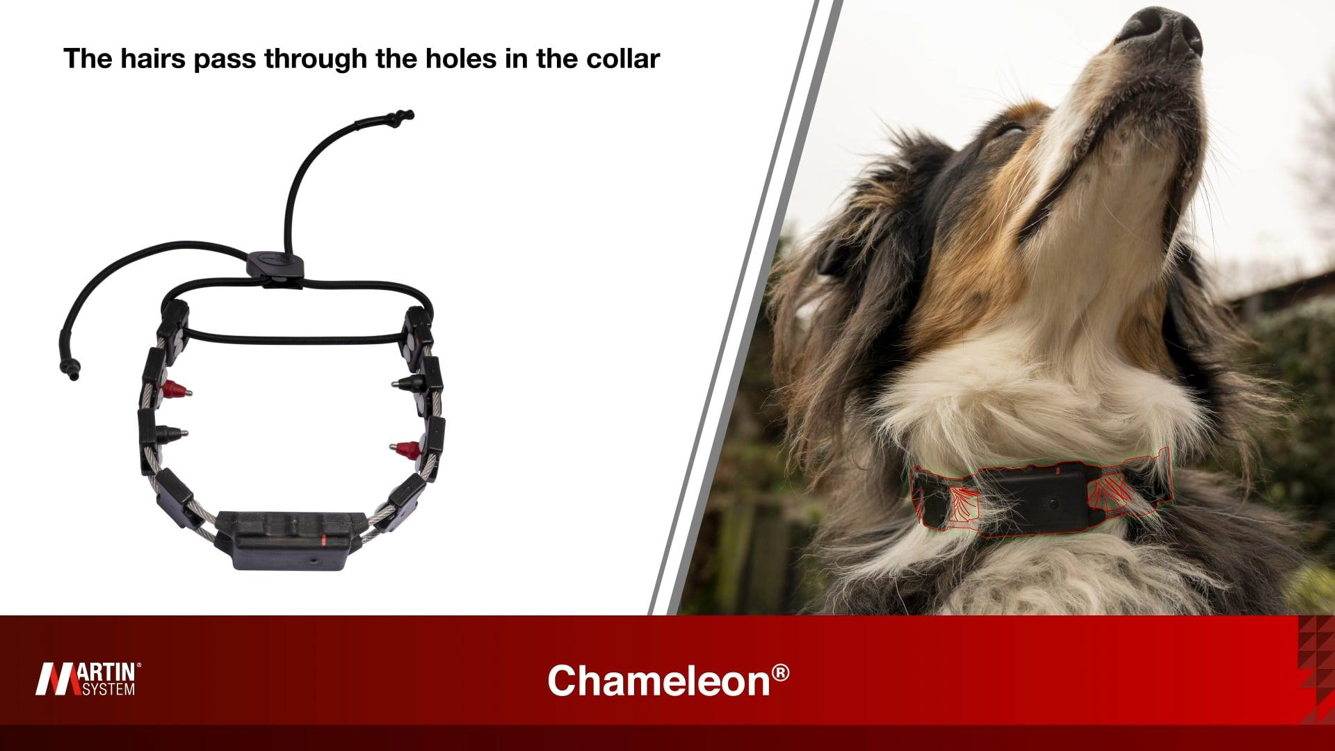Chameleon® Patent