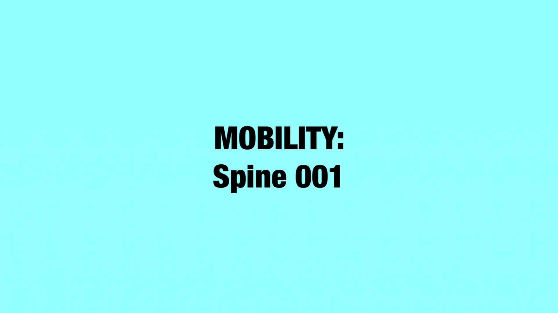 BW MOBILITY Spine 001