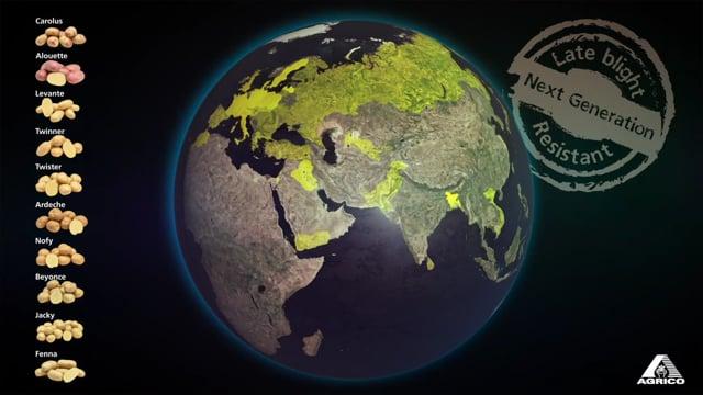 Knipsel Worldwide