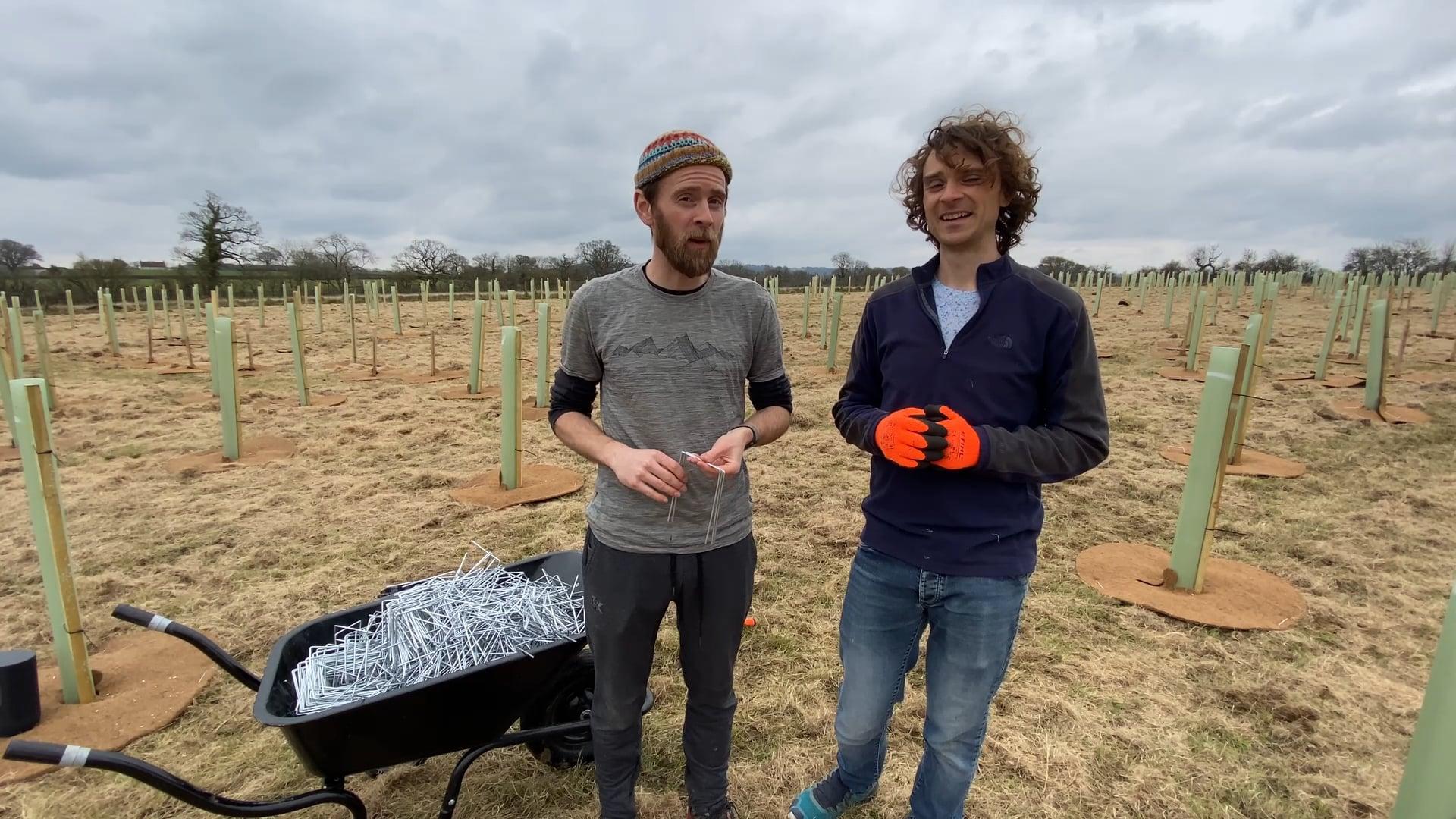Ninebarrow Woodland Update - Saturday 20th March