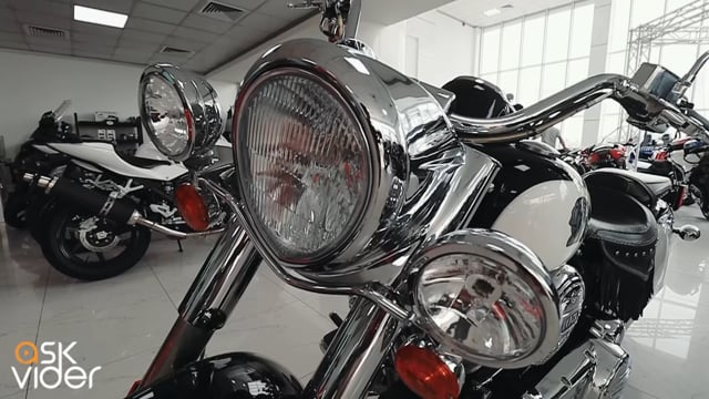 INDIAN CHIEF - BLACK / WH...