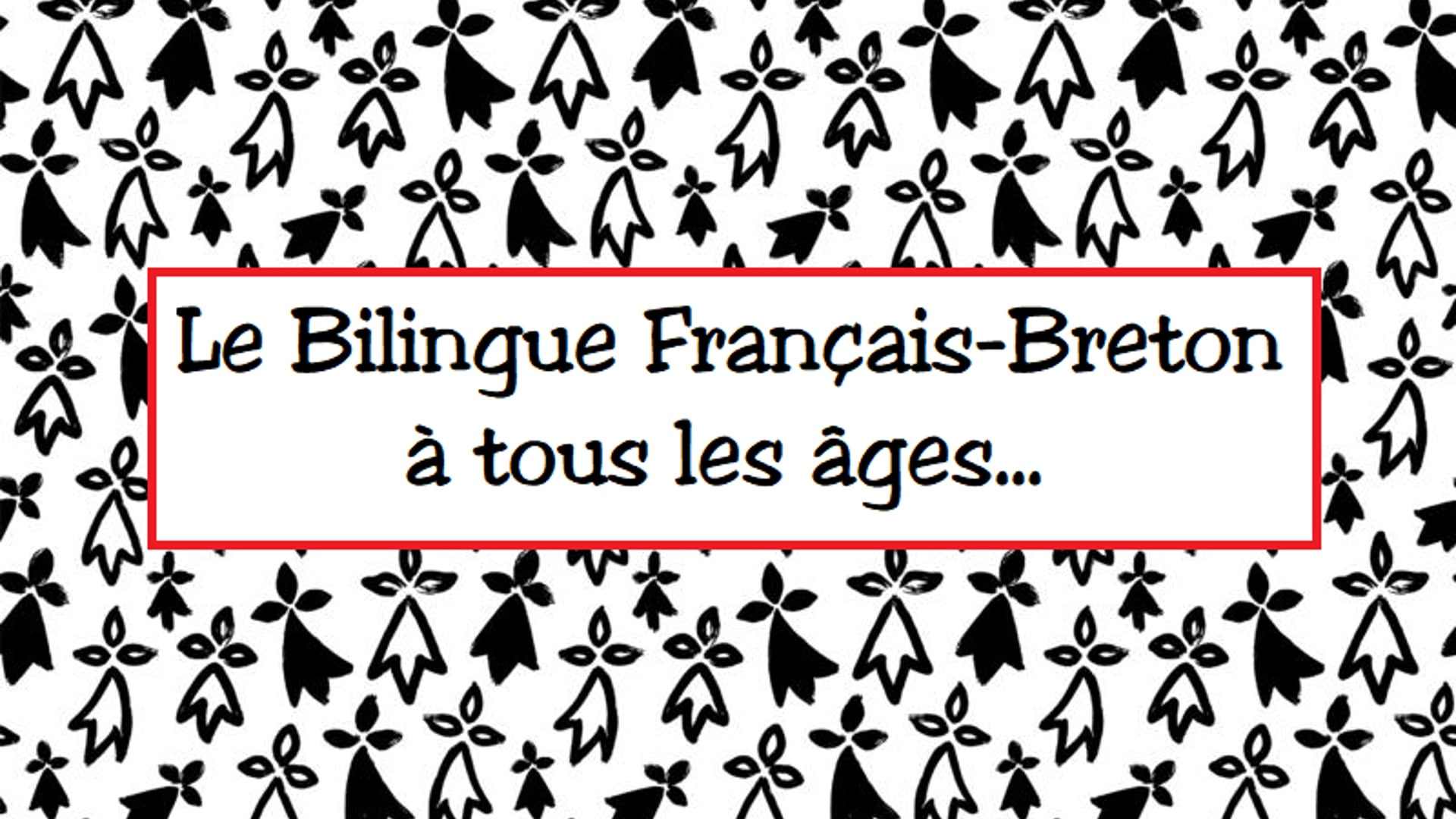 La Filière Bilingue - NdV Plouescat