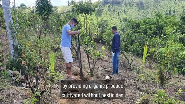 Planting Agroforestry EN