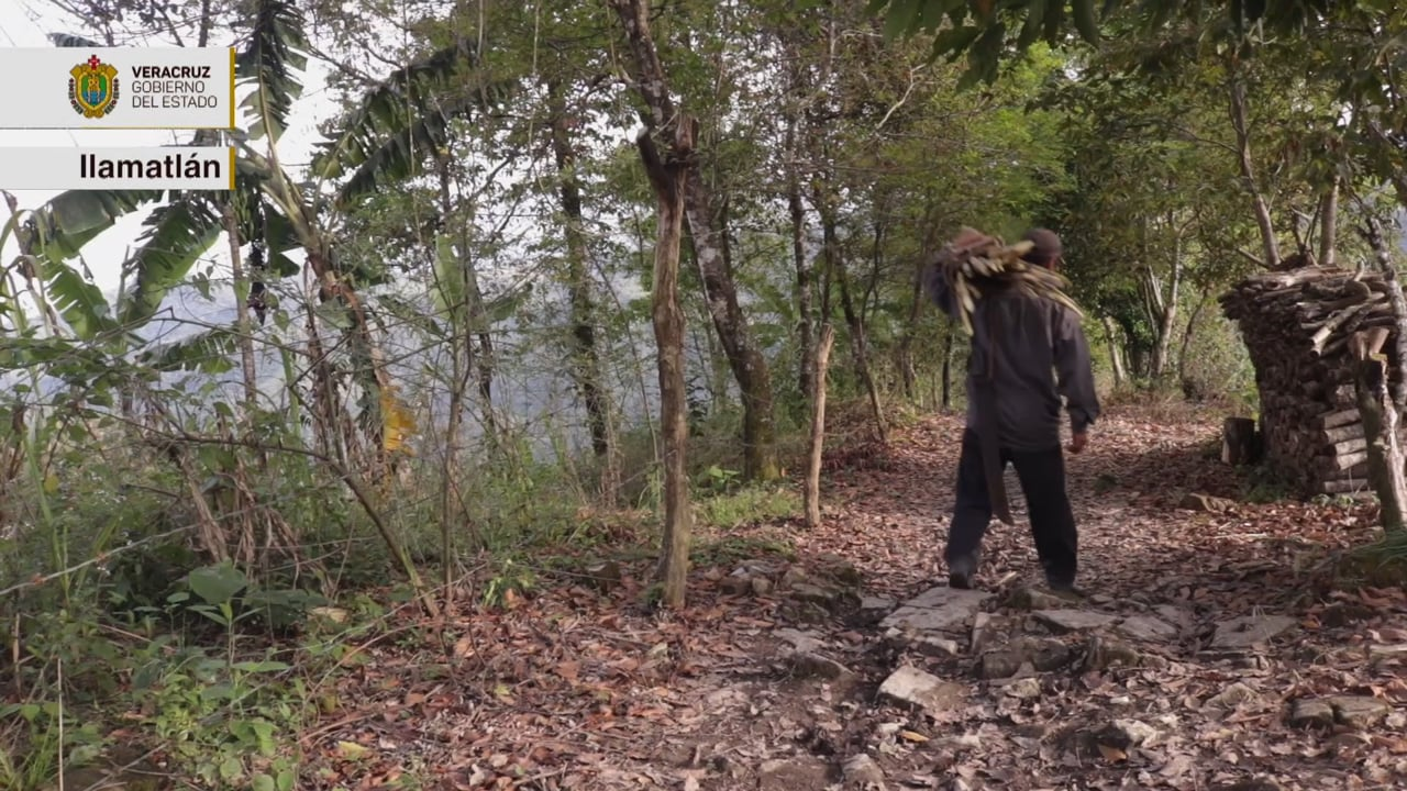 Orgullo Veracruzano: Ilamatlán