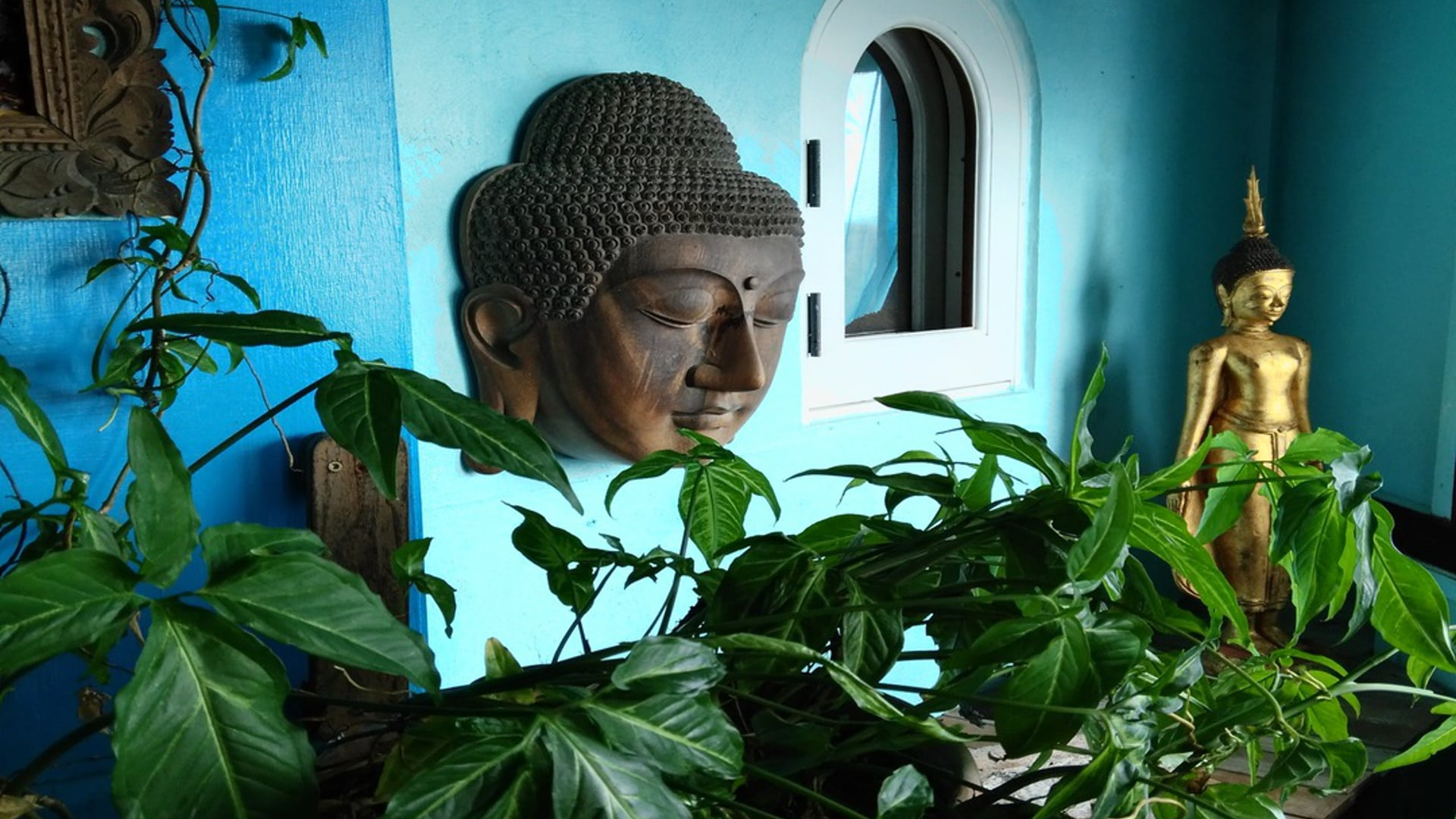 March 18: Right Mindfulness--Wholistic Caring Attention