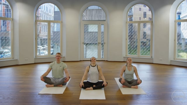 Yoga #41 Vinyasa