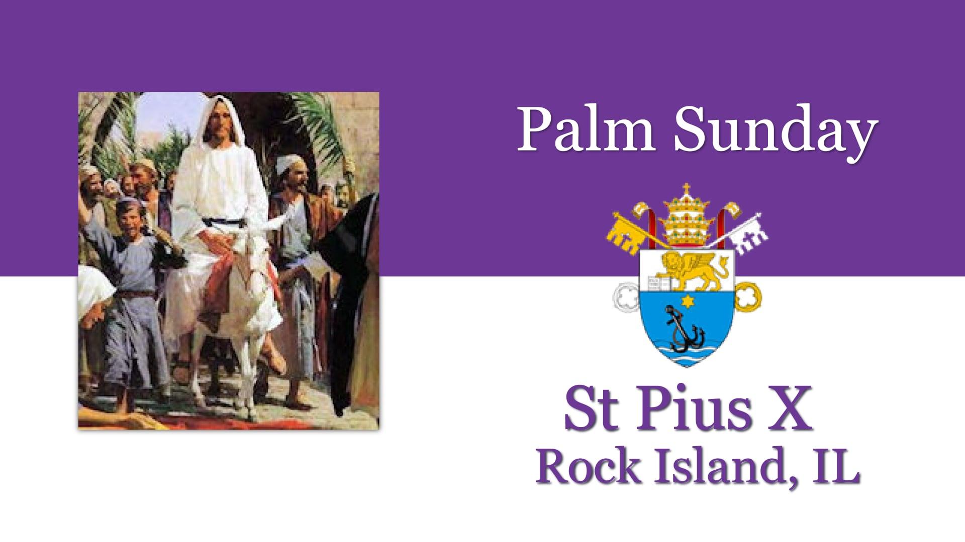 Palm Sunday, March 28th, St Pius X, Rock Island