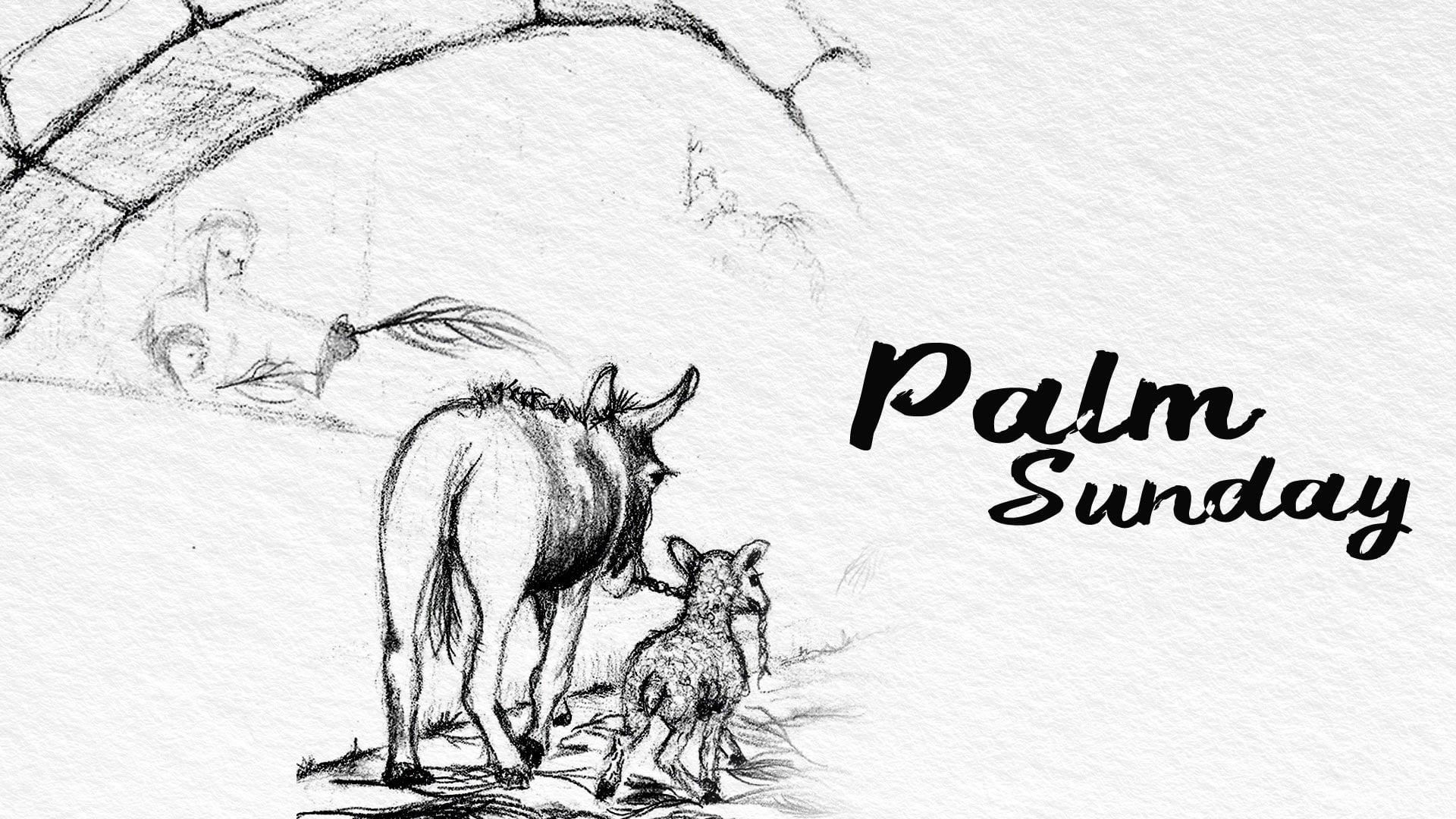 3/28/2021 | Palm Sunday - 9:30 AM