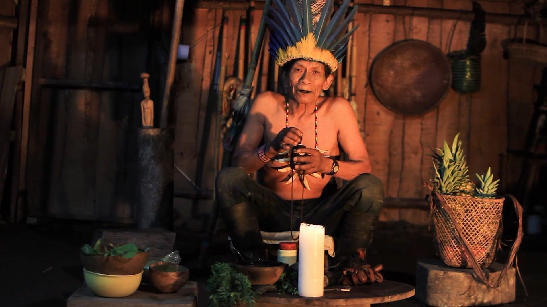 MANAVAI Ancestral Wisdom 2