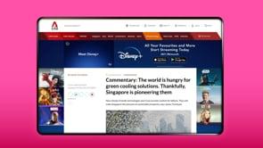 MediaCorp / Disney+ / Skinner