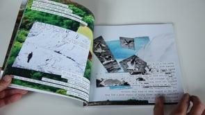 Clay Country Kemeneth book 2021