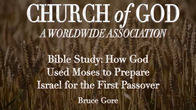Bible Study: How God Used Moses to Prepare Israel for the First Passover