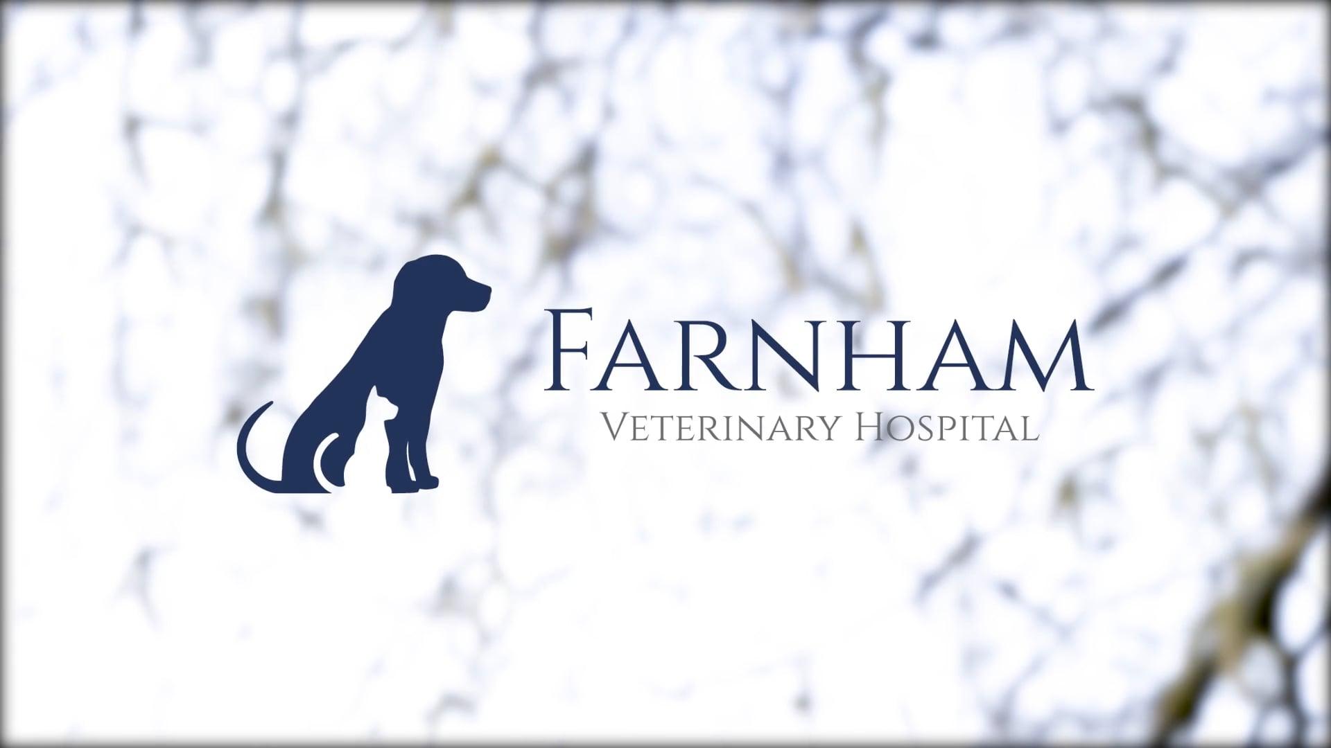 Farnham Veterinary Hospital - Opening