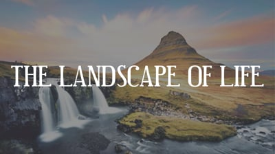 Day 4 - The Landscape Of Life
