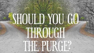 Should You Do The Purge?