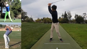 Backswing Height Limiters