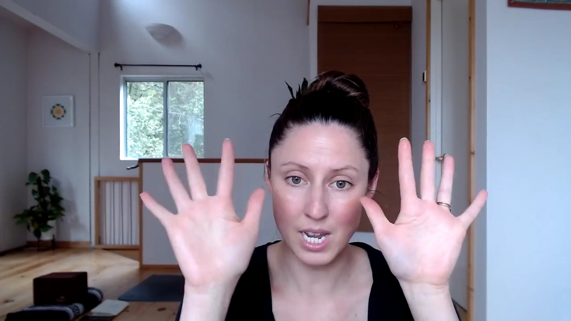"""30 min """"Alignment of the Hands and Feet"""" Flow"""