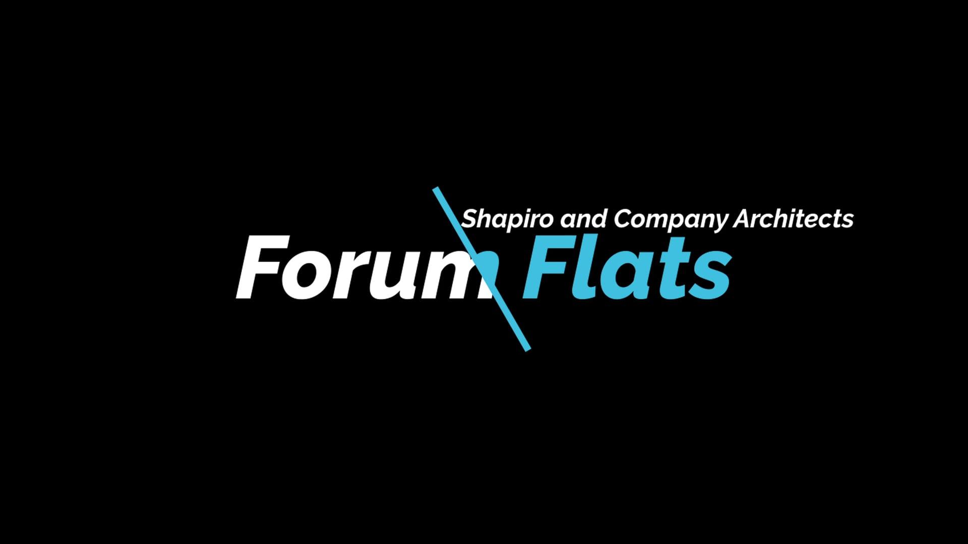 Forum Flats-Shapiro Architects