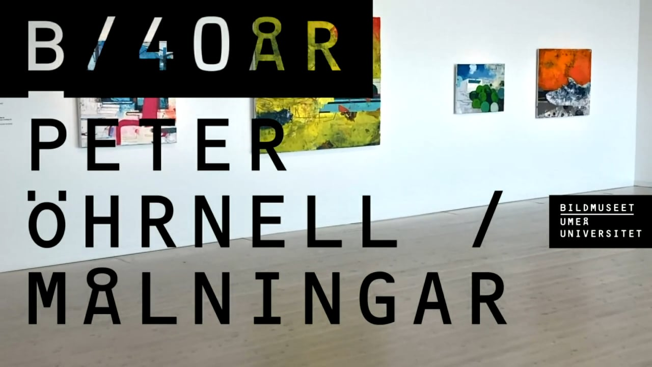 Film: Digital vernissage / Peter Öhrnell / Målningar