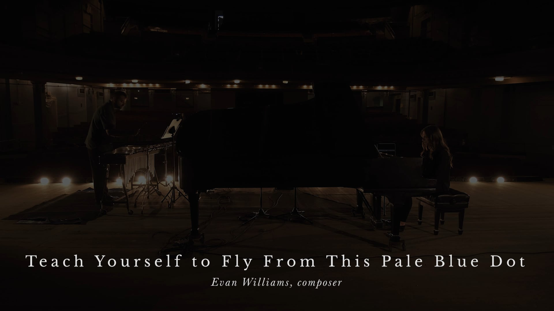 Teach Yourself To Fly From This Pale Blue Dot (2020) by Evan Williams - The Oliveros Response Project