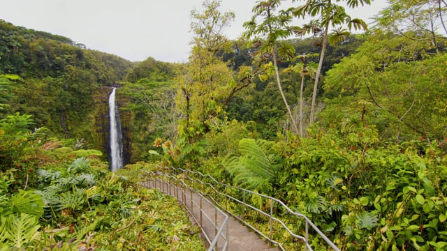 Incredible Diversity of the Big Island, Hawaii. Part 2 - Short Relax Video