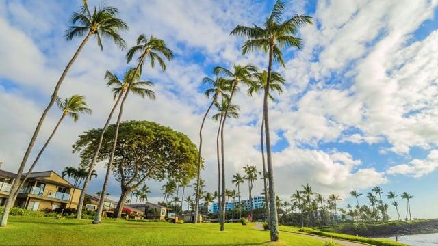 Maui Island, Hawaii. Part 3 -  Short Relax Video