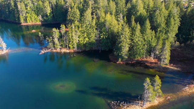 Birds Eye View of Vancouver Island - Aerial Relax Video