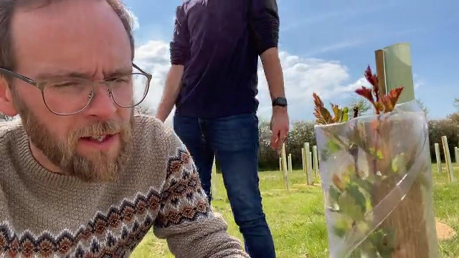 Ninebarrow Woodland Update - Sunday 2nd May