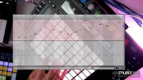 Ableton Live 11 | Randomizacja nut