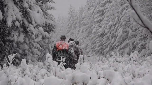 Brayden's Hunt of A Lifetime Moose Hunt in Vermont