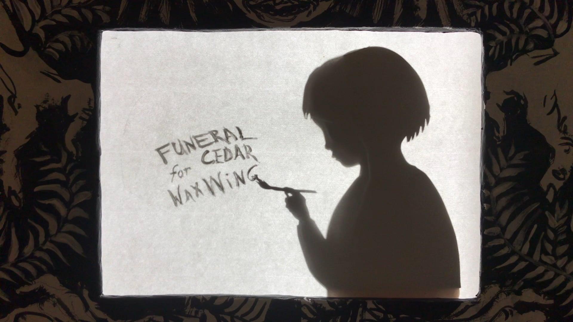 Funeral for Cedar Waxwing