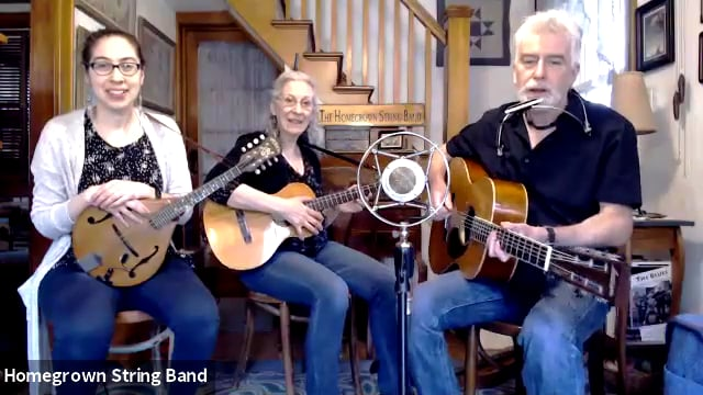 Homegrown String Band in Concert