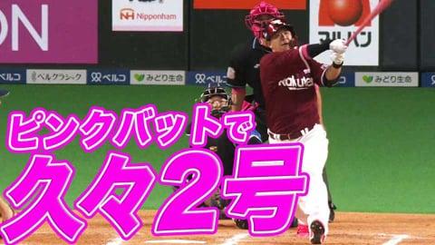 【ピンクバット】イーグルス・浅村 久々2号