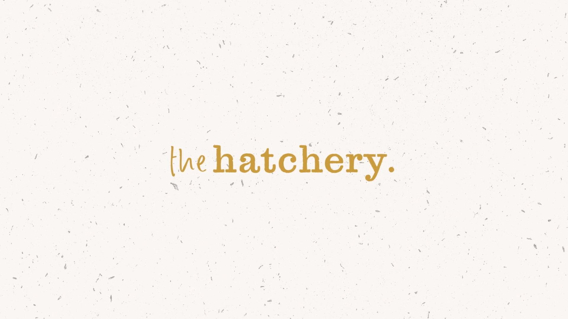 The Hatchery_Reveal