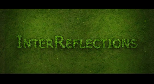 InterReflections (2020) by Peter Joseph
