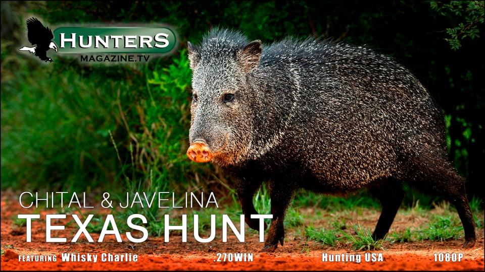 Texas Hunt