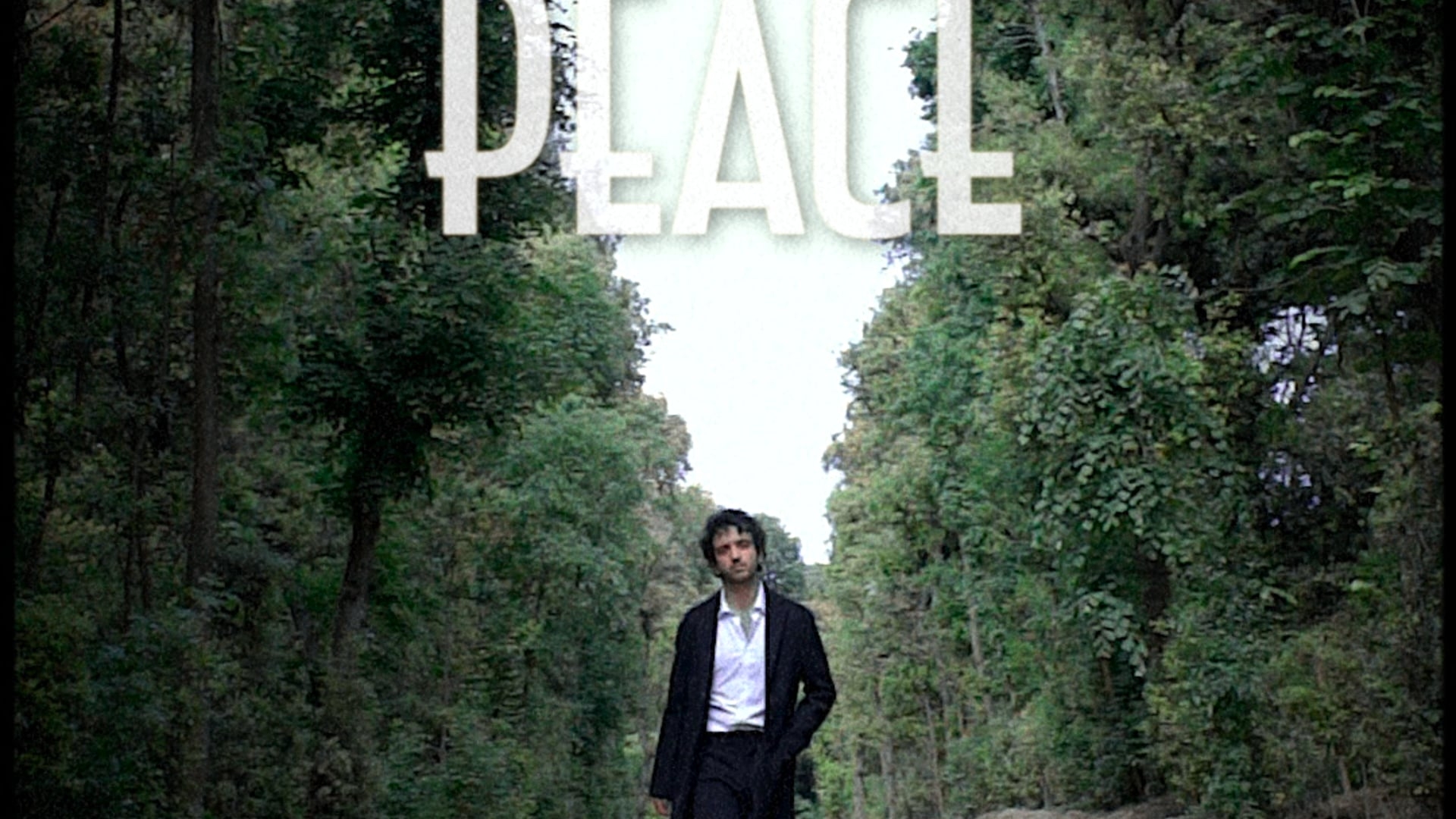 Tribute to War and Peace